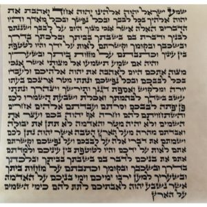 Mezuzah Scrolls